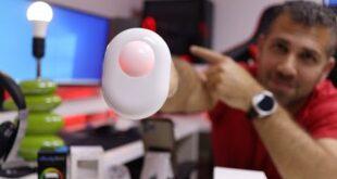 Shelly Sensor & Shelly Bulb 😂👍
